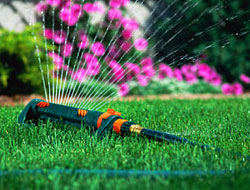 Summer Lawn Watering